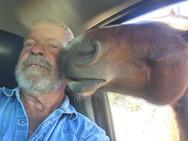 Equine Kiss