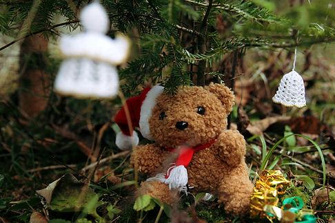 Weihnachtsbär.jpg