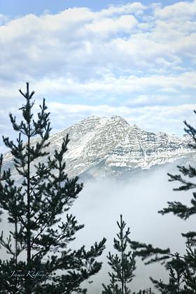 Ötscher-Nebel.png