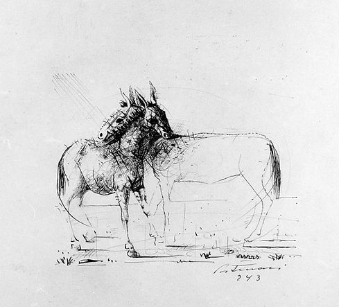 48_Cavalos.jpg