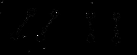 guajiro-esquema-11.png