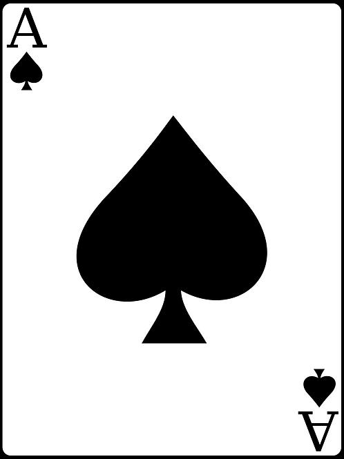 Ace Sponsorship Level