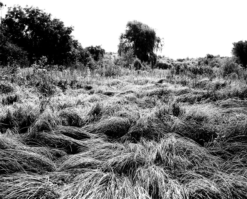 Untitled (A Landing site).jpg