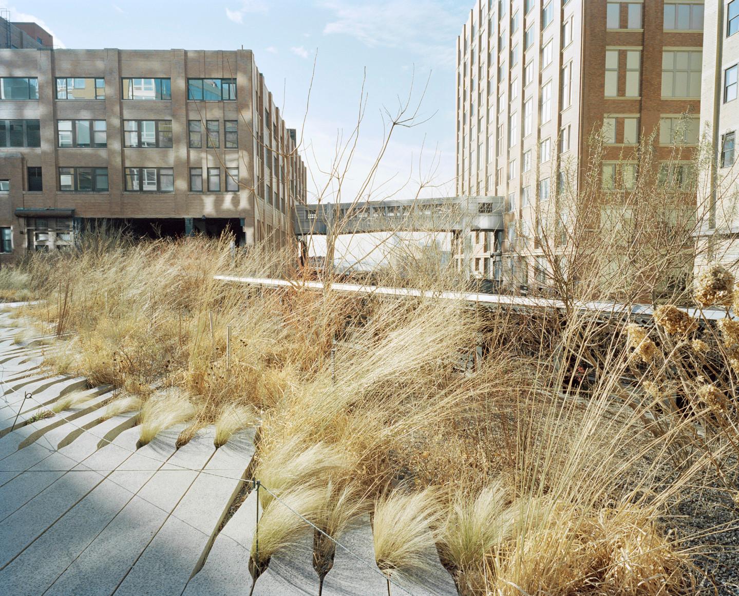 Highline_03.jpg
