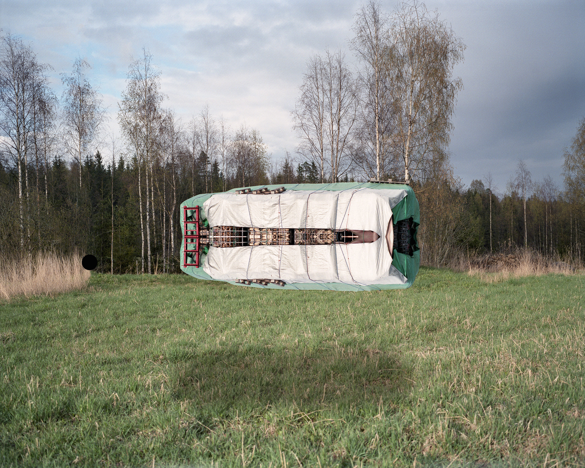 A meadow installation.jpg