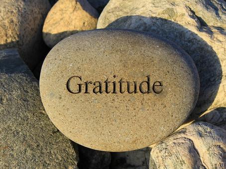Why Not Gratitude?