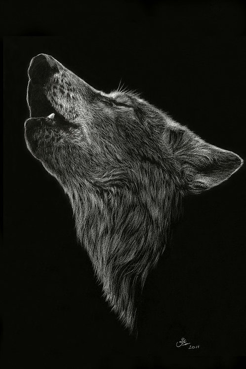 Call of the Wild - Original Wolf Drawing