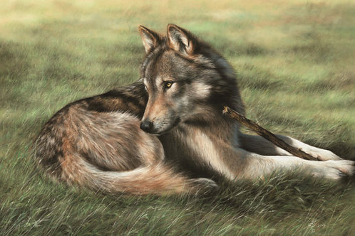 Chewing it Over- Original Wolf in Pastel