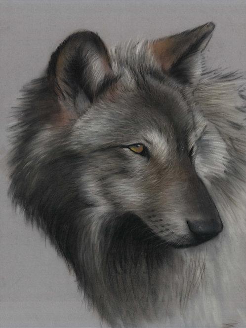 Original Wolf Pastel Painting