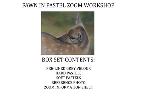Zoom Live - Fawn in Pastel Workshop Kit