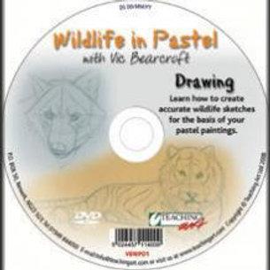 WILDLIFE IN PASTEL DVD - DRAWING