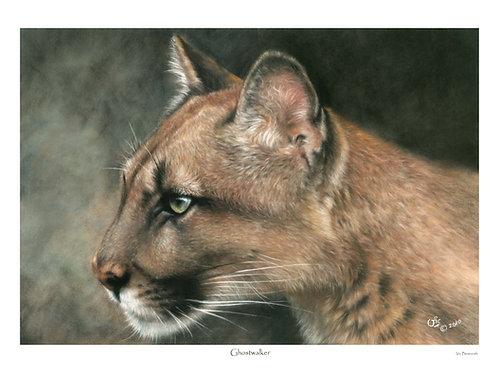 'GHOSTWALKER' LIMITED EDITION MOUNTAIN LION PRINT