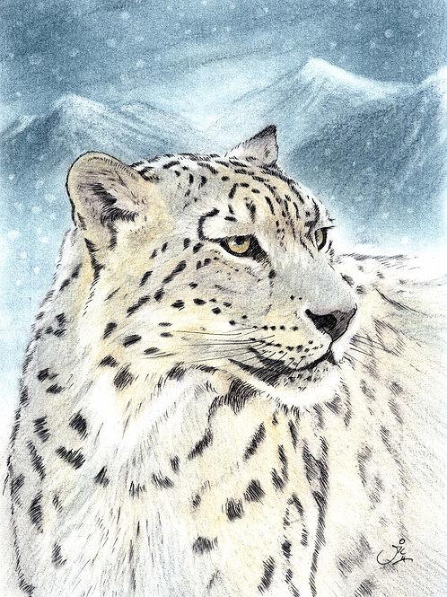 'Yarko' - Original Snow Leopard Painting