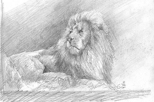 Manzi Original Sketch