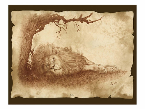 'SIESTA' LIMITED EDITION LION PRINT