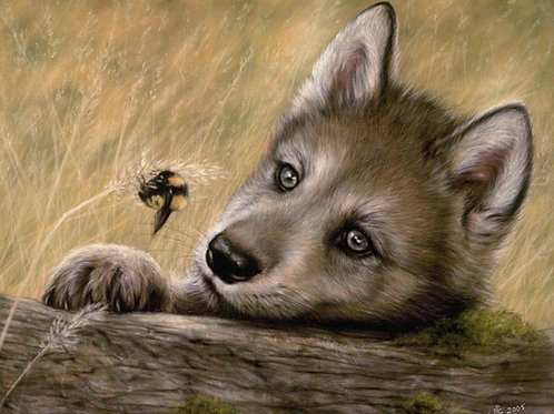 Spellbound - Original Wolf Cub in Pastel