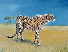 Cheetah Completed.jpg