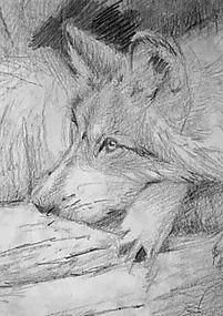 Complete Wolf.jpg