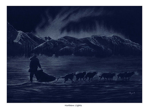 'NORTHERN LIGHTS' LIMITED EDITION HUSKY PRINT
