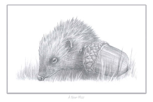 'A NEAR MISS'- SIGNED HEDGEHOG FUNDRAISING PRINT