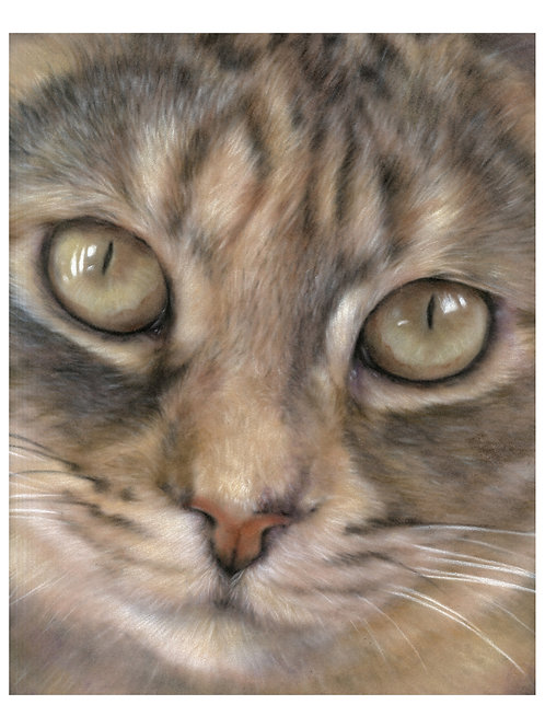 'NELL' OPEN EDITION CAT PRINT