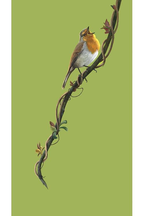 'The Joys of Spring' Open Edition Robin Print