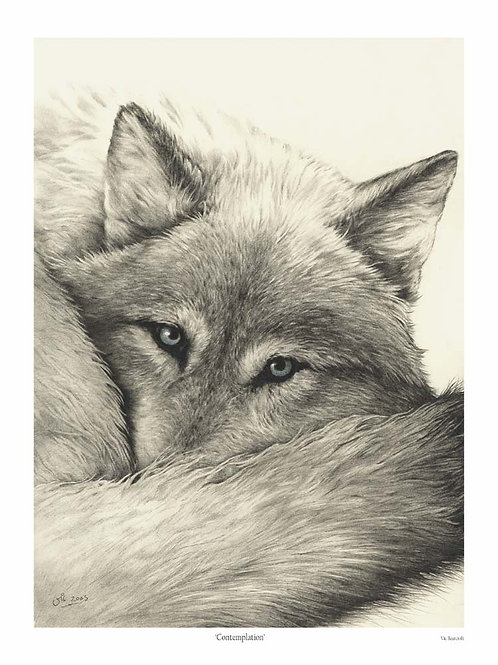 'CONTEMPLATION' OPEN EDITION WOLF PRINT