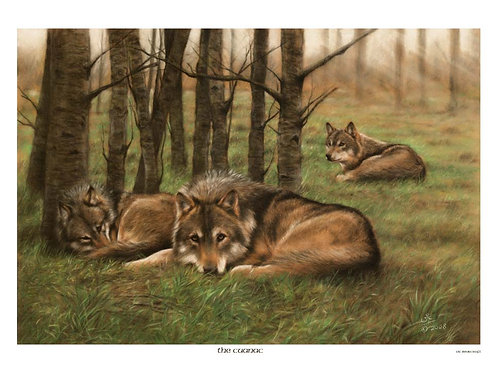 'THE CUANAC' LIMITED EDITION WOLF PRINT