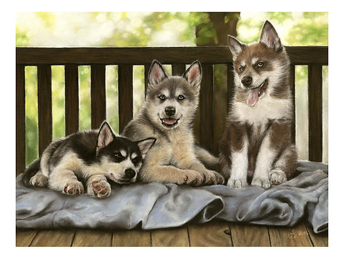 'BUTTER WOULDN'T MELT' LIMITED EDITION HUSKY PUP PRINT