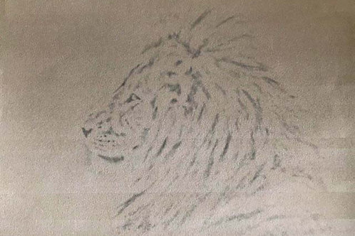 Lion Pre-Lined Velour & Reference Photo - Online Tutorial