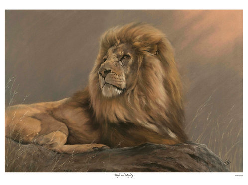 'HIGH & MIGHTY' LIMITED EDITION LION PRINT
