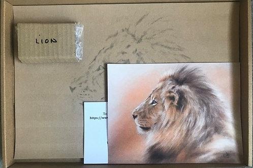 Lion in Pastel Box Set