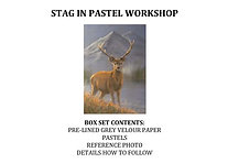Zoom Live - Stag in Pastel Workshop Kit