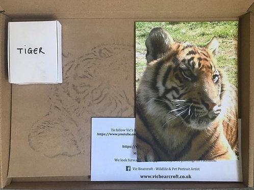 Tiger in Pastel Box Set