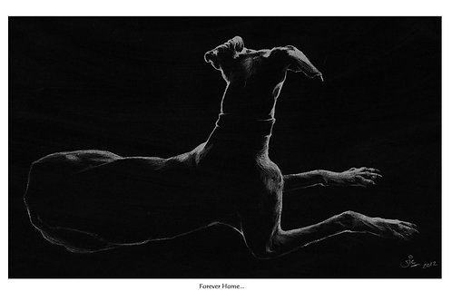 Forever Home... Open Edition Hound Print