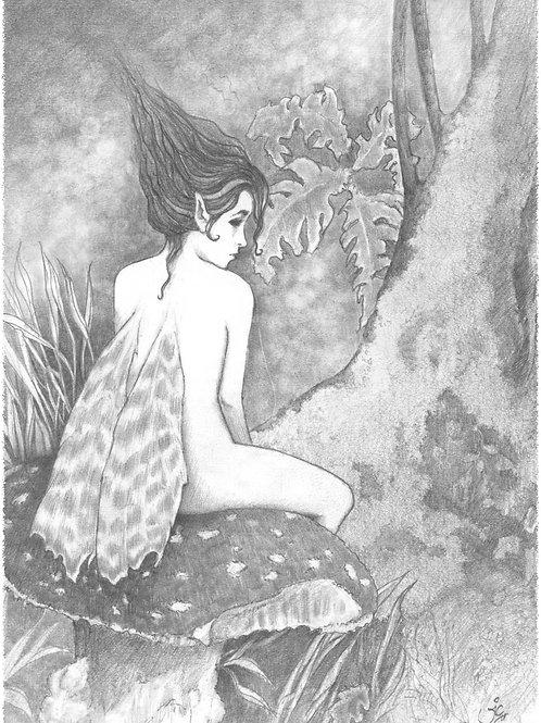 'Toadstool Fairy' Original Sketch