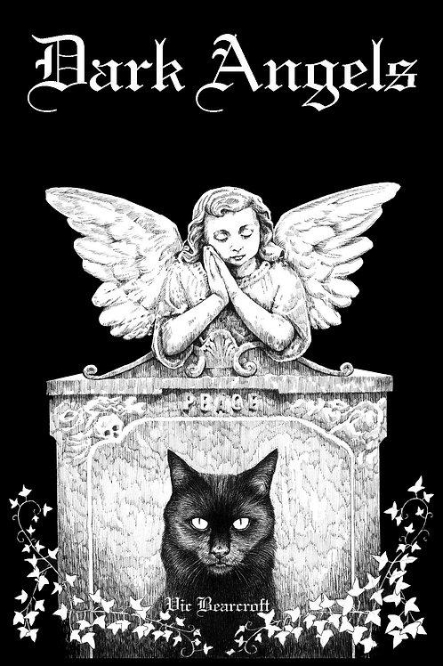 DARK ANGELS BOOK
