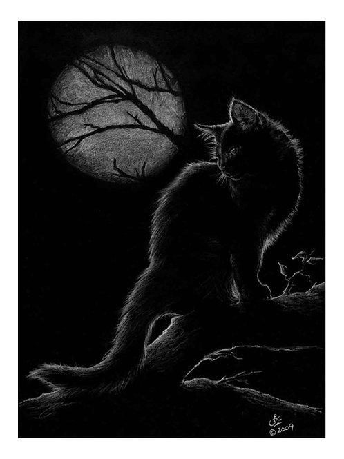 'Moonlighting' Original Drawing