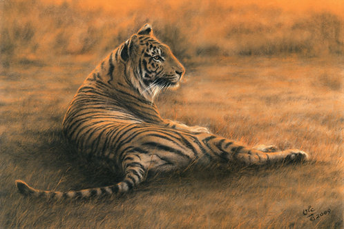 Red Dawn - Original Tiger in Pastel