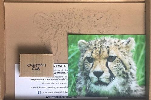 Cheetah Cub in Pastel Box Set