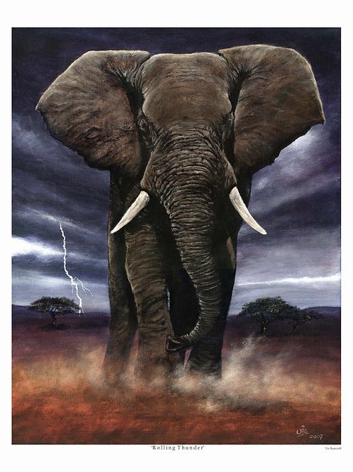 'ROLLING THUNDER' LIMITED EDITION ELEPHANT PRINT