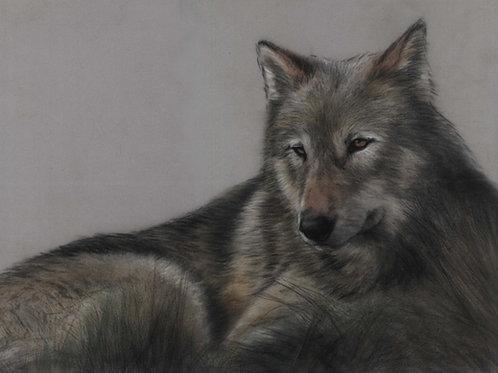 Wolf Original Pastel Painting