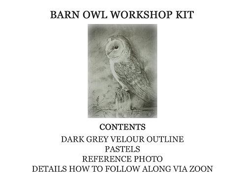Barn Owl in Pastel Workshop Kit