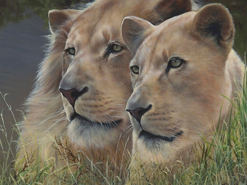 Children of the Sungod - Original White Lion Oils on Wood