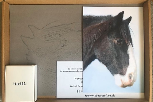 Horse in Pastel Box Set