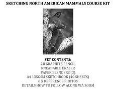 Sketching North American mammals Course Kit