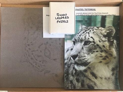 Snow Leopard in Pastel Box Set