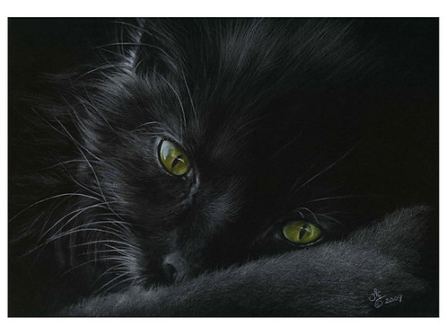 'CAT NAP' OPEN EDITION BLACK CAT PRINT