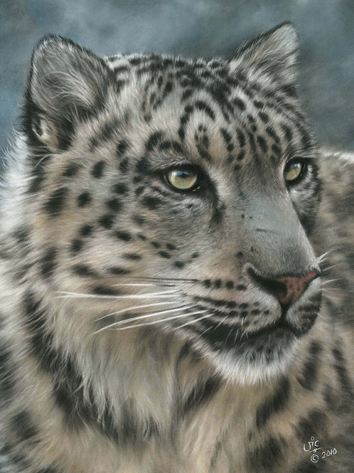 Mizi - Original Snow Leopard in Pastel