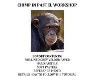 Zoom Live - Chimp in Pastel Workshop Kit